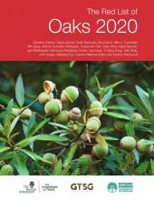 Red List of Oaks 2020